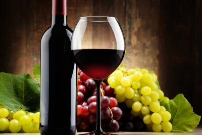 Bild Komposition mit Glas, eine Flasche Rotwein und frischen Weintrauben