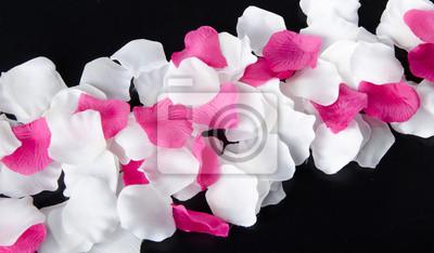 Bild Komposition mit weißen und rosa Blüten