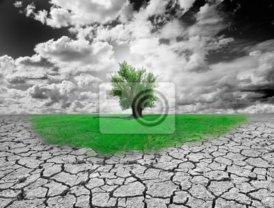 Konzept der Umwelt mit Baum und trockenen Boden