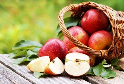 Bild Korb mit frischen Äpfeln