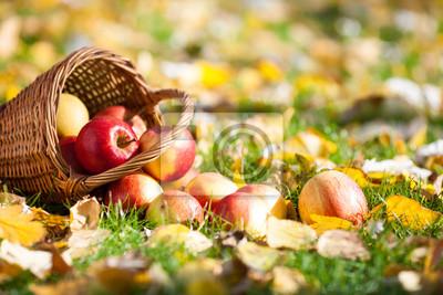 Korb voller roter Äpfel