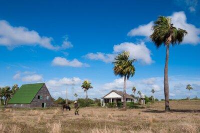kubanischen Bauernhof