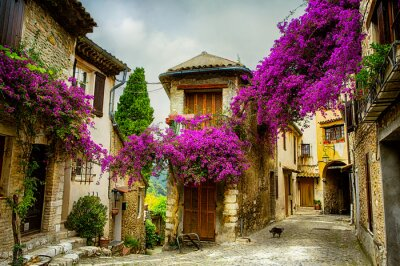 Bild Kunst schönen Altstadt von Provence