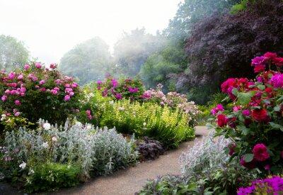 Bild Kunstblumen am Morgen in einem englischen Park