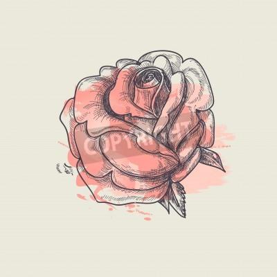 Bild Künstlerische Rose Vektor-Illustration
