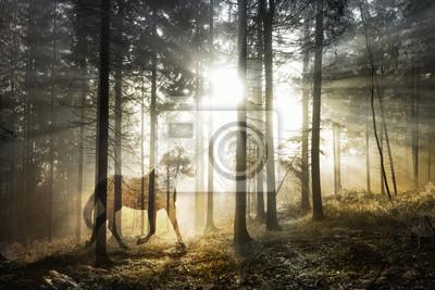 Künstlerisches mystisches Pferd in der Fantasy sonnigen Fee Waldlandschaft. Abstraktes Einhorn im magischen Wald. Doppelte Belichtungsmethode verwendet.