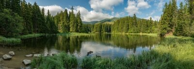 Bild lake in the forest in lower tatra mountains
