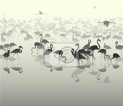 Bild Landschaft mit Silhouetten von Flamingo 3