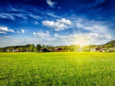 Bild Landschaft Wiese Feld mit Sonne und blauer Himmel