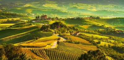 Bild Langhe vineyards sunset panorama, Grinzane Covour, Piedmont, Italy Europe.