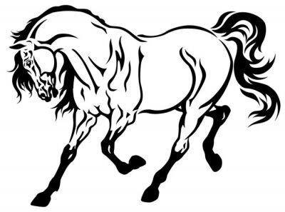 Laufenden Pferd Schwarz Weiß Leinwandbilder Bilder Trab Rennpferd