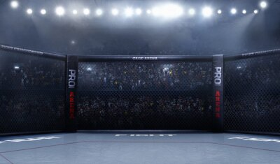 Bild Leere Mma Arena Seitenansicht unter Lichter. Vollständige Tribüne.