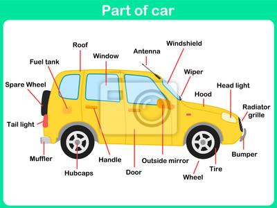 Lehnt teile auto für kinder - arbeitsblatt leinwandbilder • bilder ...