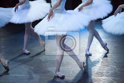 Leistung, Choreographie, Tanzkonzept. elegante Beine von amasing schöne Ballerinen stehen in identischen Posen von anmutigen und würdevollen Vögel, schneebedeckten weißen Schwäne