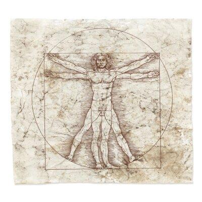 Bild Leonardo da Vinci