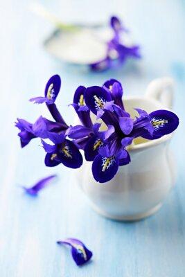 Bild Lila Iris-Blüten in einem Vintage-Tasse