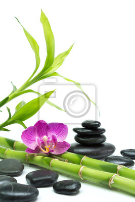 Bild lila Orchidee mit Bambus und schwarzen Steinen - weißer Hintergrund