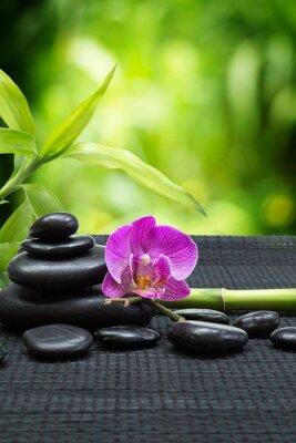 lila Orchidee mit Turm schwarzen Steinen, Bambus auf schwarz matt