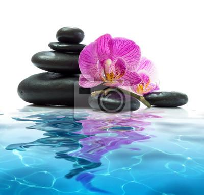 lila Orchideen mit Turm schwarzen Steinen auf blauem Wasser