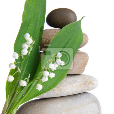 Bild Lily-of-the-valley vor einem Kies-Stack