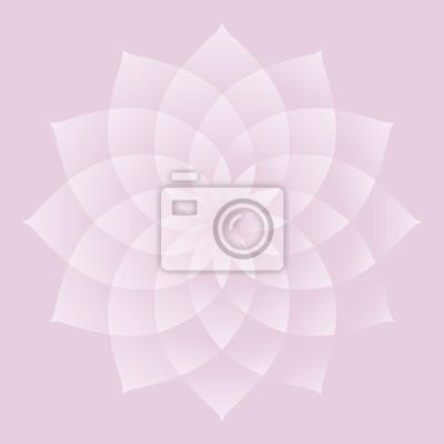 Lotus; ein wichtiger heiliges Symbol im Buddhismus und Hinduismus.