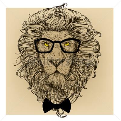 Bild Löwen Charakter Porträt
