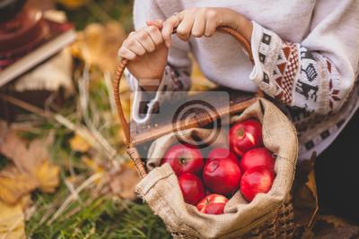 Mädchen Hände halten einen Korb mit roten Äpfeln