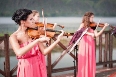 Bild Mädchen spielt Geige