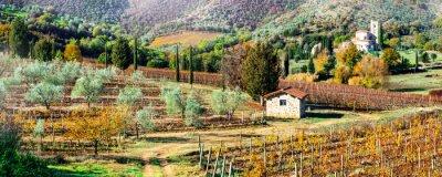 Bild Magic autumn landscapes in Tuscany countryside. Vine region of Italy