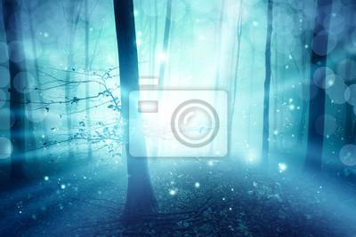 Magischer blauer nebeliger Wald mit Lichtstrahl bokeh Hintergrund. Farbfilter-Effekt verwendet.