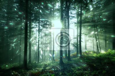 Magisches Sonnenlicht in der nebligen sonnigen Waldlandschaft mit Leuchtkäferlicht. Schönes Märchenwald
