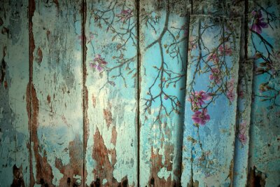 Bild Magnolia im Frühjahr alten Hintergrund