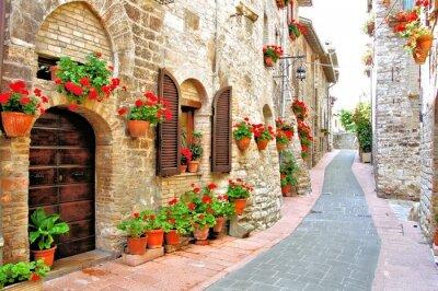 Bild Malerische Gasse mit Blumen in einem italienischen Bergdorf