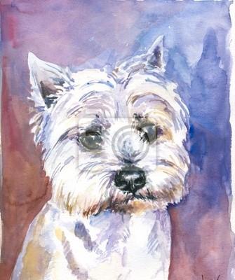 Malteser Hund Aquarell gemalt