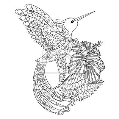 Malvorlage mit hummingbird in hibiskus, zentangle illustarti ...