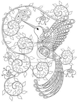 Malvorlage Mit Hummingbird Zentangle Fliegenden Vogel Für