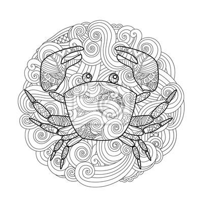 Malvorlage Verziert Krabbe Im Kreis Mandala Isoliert Auf Weissem
