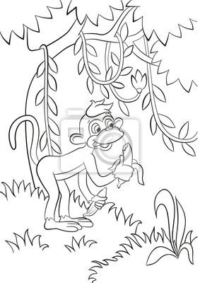 Malvorlagen Kleiner Netter Affe Isst Banane Im Wald Seine Lächelnd
