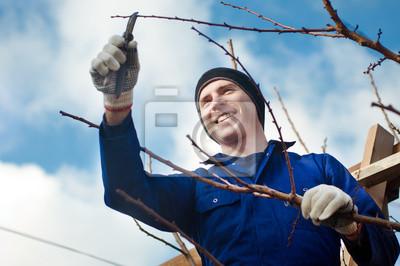 Man Beschneiden Brunch mit der Gartenschere