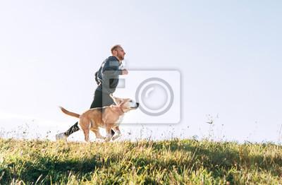 Bild Man runs with his beagle dog. Morning Canicross exercise.