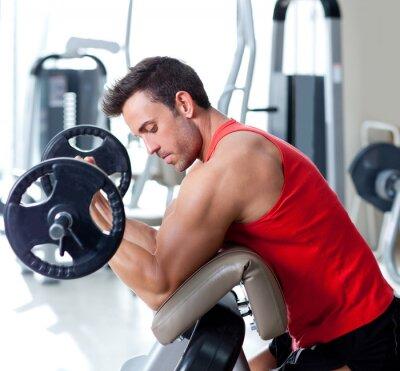 Bild Mann mit Kraftgeräten auf Sportgymnastik