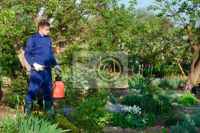 Männlich Gärtner der Schutz der Pflanzen