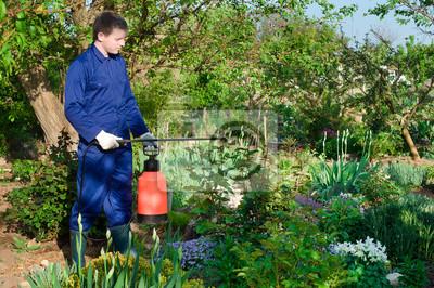 Männlich Gärtner der Schutz der Pflanzen vor Ungeziefer