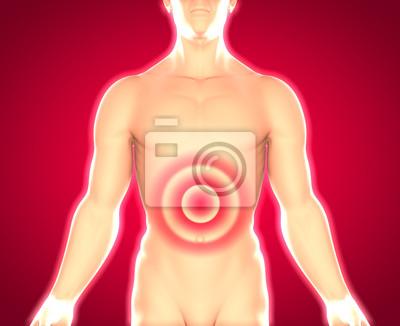 Männlicher oberkörper - magenschmerzen und bauchschmerzen ...