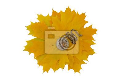 Mechanismus der Taschenuhr auf einem Hintergrund von gelben Blättern. Isolieren