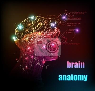 menschliche Gehirn Hintergrund Lichtdesign