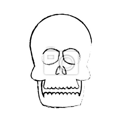 Menschliche schädel anatomie gesundheit front skizze vektor ...