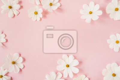 Bild Minimal styled concept. White daisy chamomile flowers on pale pink background. Creative lifestyle, summer, spring concept. Copy space, flat lay, top view.
