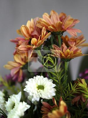 Bild mixed flowers