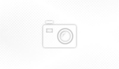 Bild Modern halftone white and grey background. Design decoration concept for web layout, poster, banner